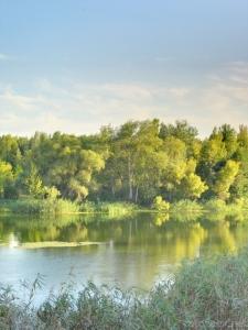Фотография Северский Донец