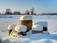 Фигуровка зимой