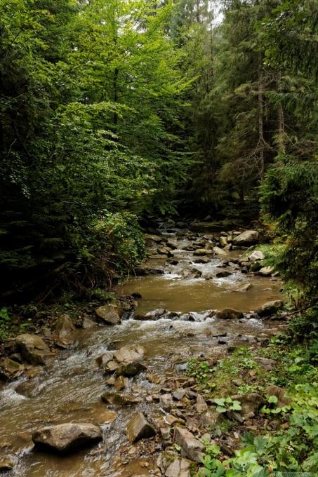 Гірська річка (Яблуницьке ПНДВ)
