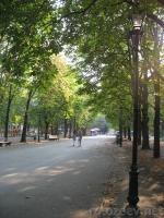 Фото сада Шевченко