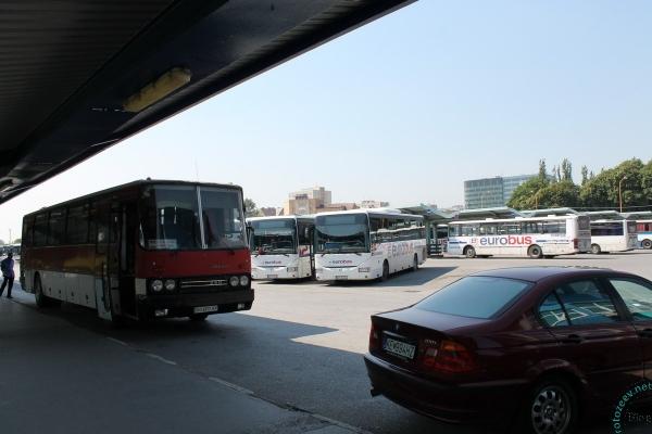 Автобус Ужгород-Кошице