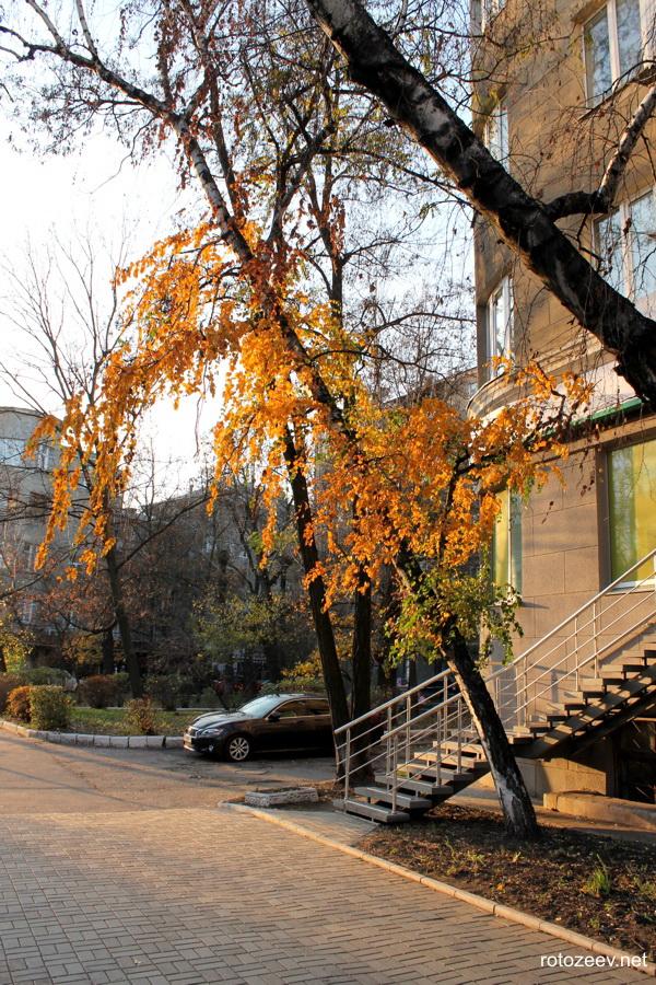 Харьков осенью