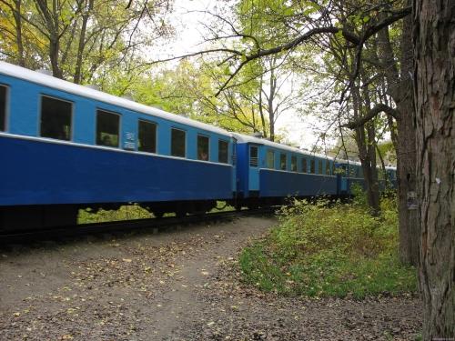 Поезд на детской железной дороге