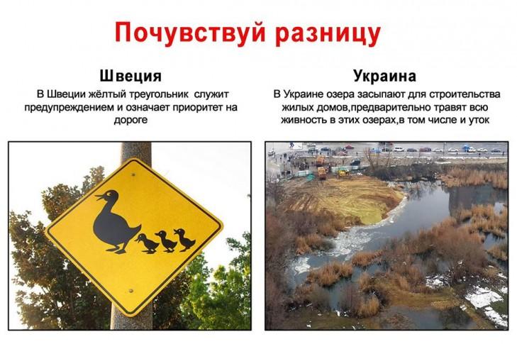 Озеро Утиное на Позняках